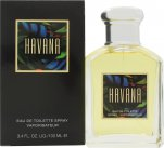 Aramis Havana Eau de Toilette 100ml Spray<br />Mænd